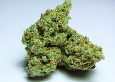 weed-flower